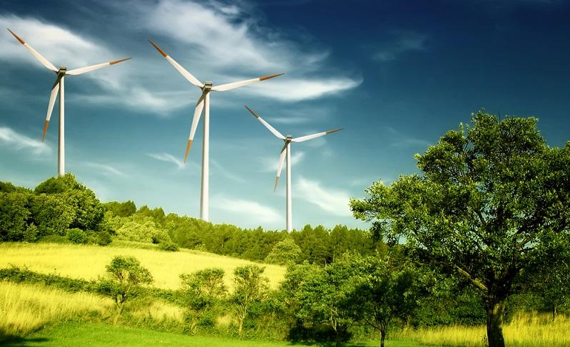 Die Auswirkungen des Klimawandels werden nach und nach immer deutlicher spürbar. Die jüngere Generation setzt sich inzwischen mit den verschiedenen Aktionen für ihre Zukunft und den Erhalt des Klimas ein.  ( Foto: Shutterstock-WDG Photo )